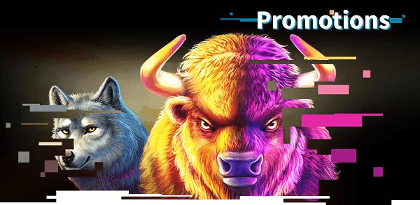 AllReels.com Casino free spins bonus